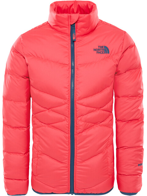 The North Face Andes Jas Kinderen roze